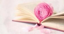 表示单纯的说说 单纯又简单的说说心情