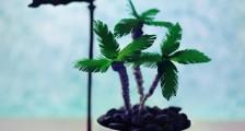 关于花草的拟人句 比喻句100句